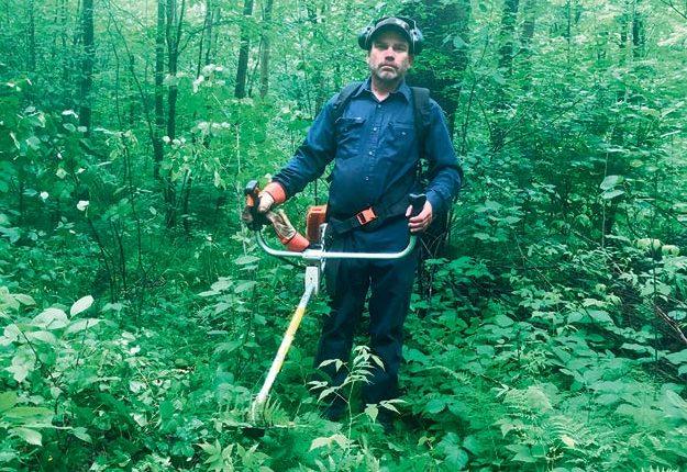 Yannick Papineau consacrera au total une cinquantaine d'heures de débrousailleuse pour raser les nerpruns dans son érablière de 1100entailles. Photo : Gracieuseté de Yannick Papineau
