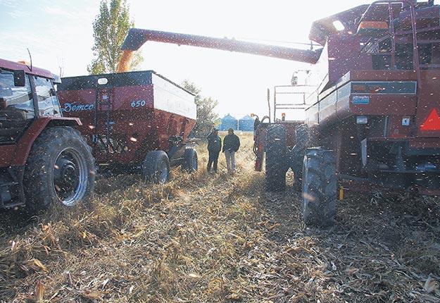 Un mois de septembre stable devrait être approprié pour les récoltes. Photo : Martin Ménard/ArchivesTCN