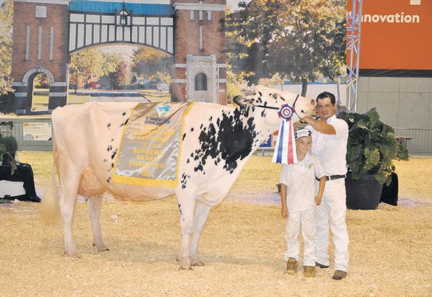 La vache Erbacres Snapple Shakira-Et, propriété de nombreux éleveurs dont la Ferme Jacobs, dans Portneuf, a été sacrée grande championne Holstein et grande championne suprême – toutes races confondues. Photo : Gracieuseté du Suprême laitier