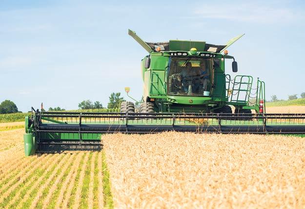 Les cultures et les agriculteurs profiteront de beau temps en août. Photo : Martin Ménard/Archives TCN