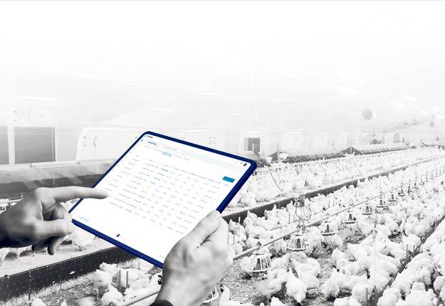 Le logiciel COMPASS permet d'avoir des informations sur l'élevage de poulet en temps réel.