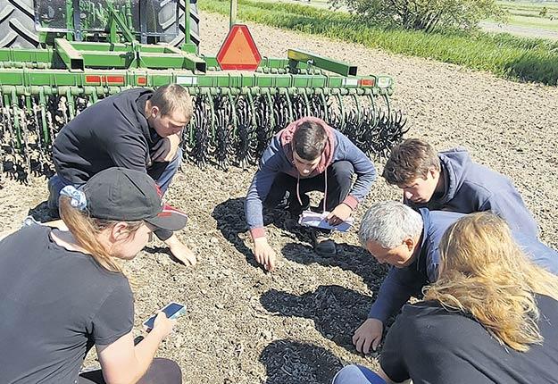 La gestion intégrée à la ferme vise à réduire au minimum l'utilisation des herbicides tout en maintenant les rendements économiques. Photo : Institut de technologie agroalimentaire du Québec