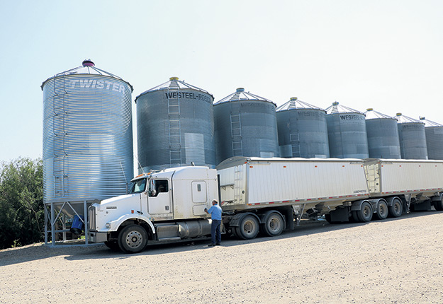 Les silos de la ferme de Bill Prybylski ne seront pas remplis cette année en raison de la sécheresse. Photo : Association des producteurs agricoles de la Saskatchewan