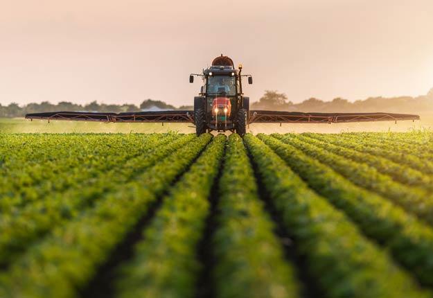Le gouvernement Trudeau décide de suspendre toutes les propositions d'augmentation des limites maximales de résidus de pesticides actuellement à l'étude. Photo : Shutterstock