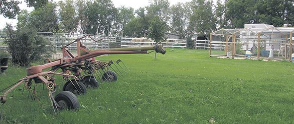 L'endroit ressemble aux petites fermes de subsistance qui occupaient le territoire québécois, il n'y a pas si longtemps.