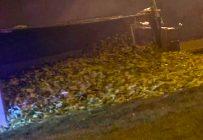 Un passant a photographié le camion qui est tombé à la renverse tôt en matinée, le 15 septembre. Photo : Tirée du Facebook de Carl Mongeau