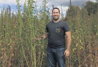 David Miville aux côtés de l'amarante tuberculée, facilement repérable parmi le soya grâce à sa hauteur. Photo : Gracieuseté du MAPAQ