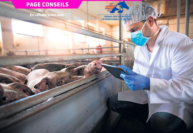 La mise en place d'un système de monitorage est une étape primordiale pour l'amélioration continue des pratiques liées à l'utilisation et à la prescription des antibiotiques. Photo : Shutterstock